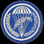 6 batalion powietrznodesantowy